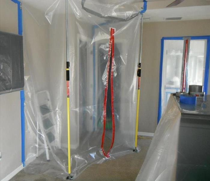 Make sure you mold is remediated correctly.