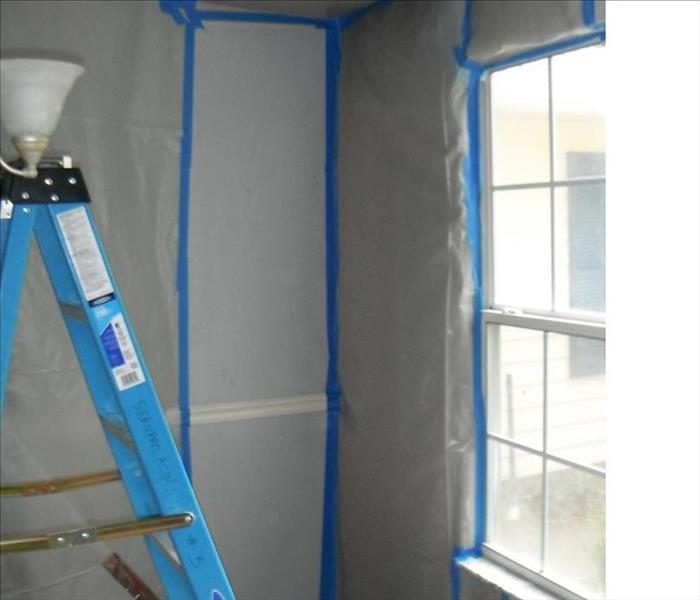 What do you do if your General Contractor Discovers Mold?