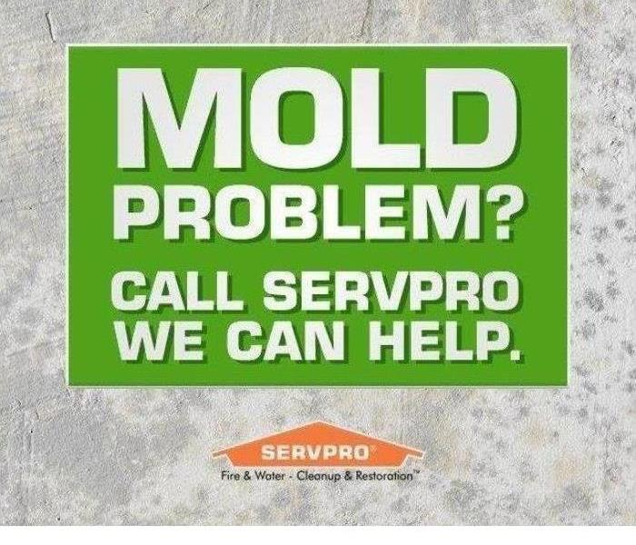 Mold Remediation Take caution when selecting a restoration company
