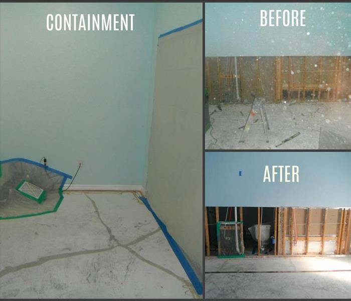 Mold Remediation Got Mold? We can fix that!