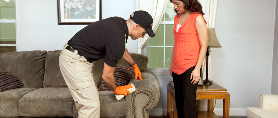 Gainesville, FL carpet upholstery cleaning