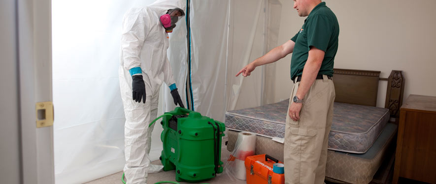 Gainesville, FL mold removal process